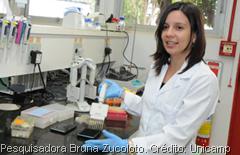 Pesquisadora Bruna Zucoloto - Crédito Unicamp