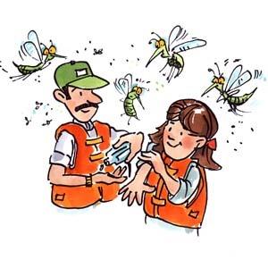 Como evitar insetos