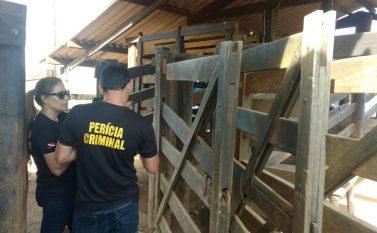 Não houve conflito e fazendeiro é temporariamente empossado pelas Forças de Segurança do Estado na Fazendinha