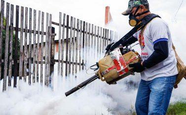 Tucuruí inicia combate mosquito Aedes aegypti