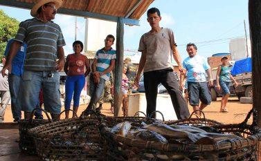 Ideflor-bio vai cadastrar pescadores e compradores do Lago de Tucuruí