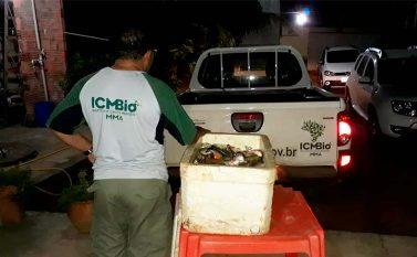 Fiscais do ICMBio apreendem e flagram pesca ilegal em reserva