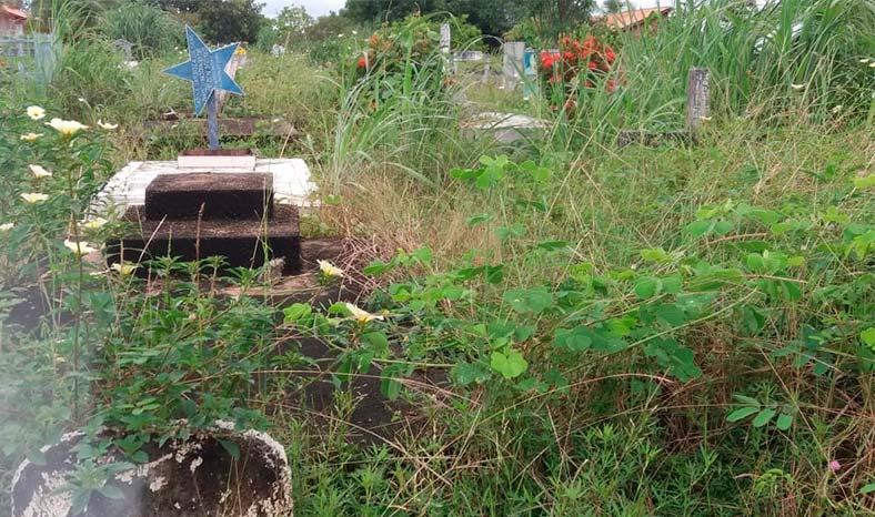 Cemitério Parque da Paz, em Redenção, está tomado pelo mato