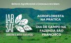 Laboratório de Negócios Agroflorestais beneficiará pequenos produtores da região de Carajás