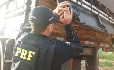 Carga ilegal de madeira é apreendida na BR-230, no município de Altamira