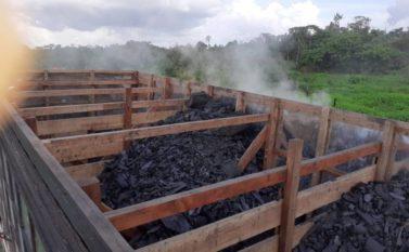 Polícia Civil apreende carga de carvão no município de Tailândia