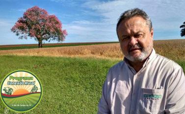 Premiação dos melhores da Copa Carajás de Três Tambores é o destaque do Conexão Rural deste domingo