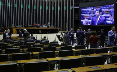 Bancada do Pará vota em peso projeto de ajuda à informais