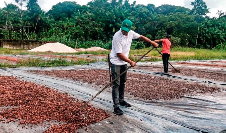 """Programa """"Territórios Sustentáveis"""" vai beneficiar municípios do sul e sudeste do Pará"""
