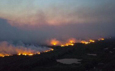Comissão prioriza Cerrado e Amazônia na pauta de trabalho após desastres ambientais
